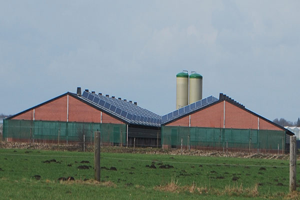 Project: Wouters Gilops - 161 kWp