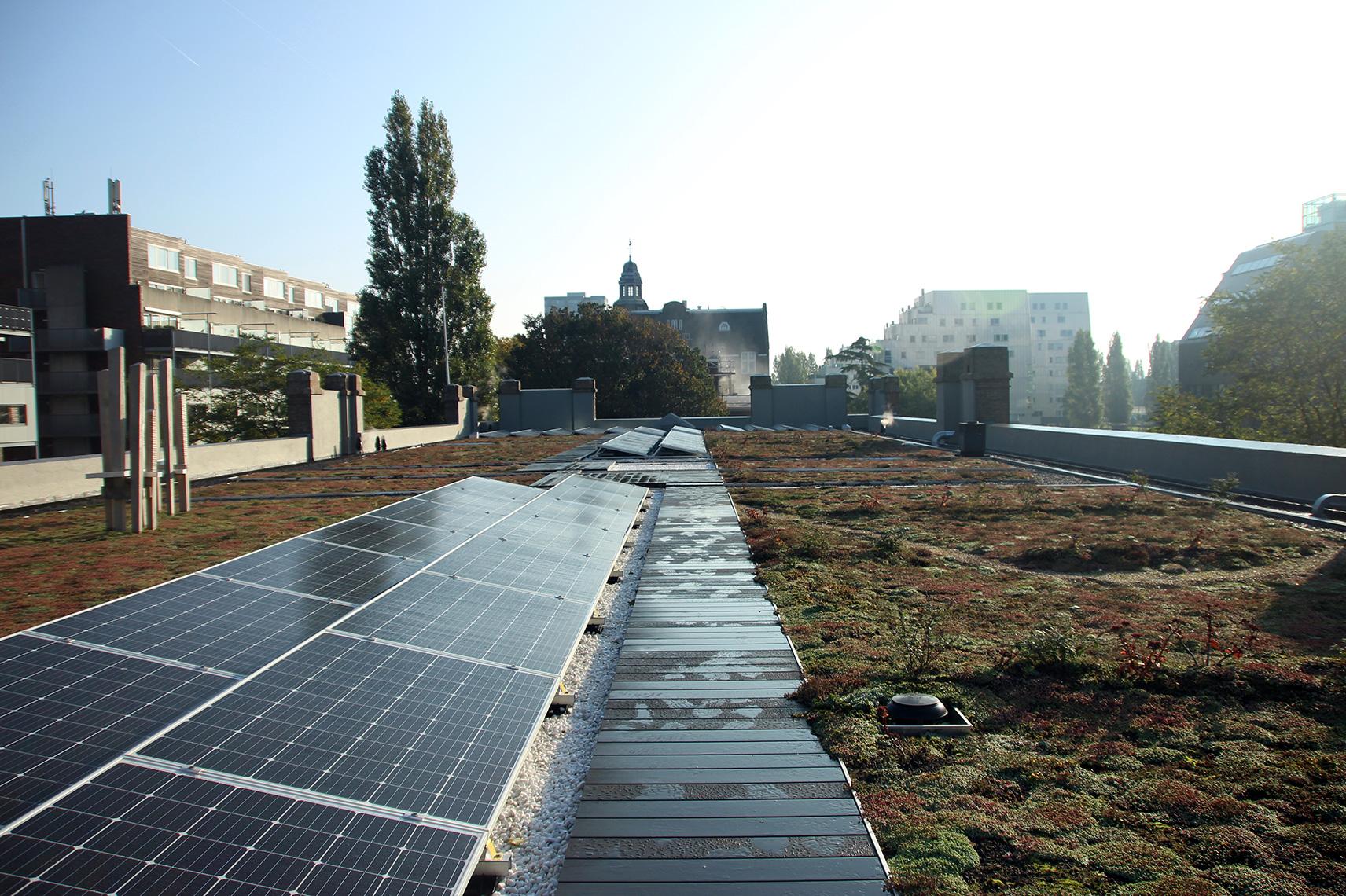Project: Oostelijke Handelskade - zon en groen